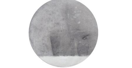 Fella Debora,_Fiori d'inverno_grafite, ardesia, carbone e olio su carta e tavola_d.50cm